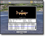 Play games free fishing games online for Fly fishing simulator