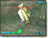 Bass_fishing_proanne